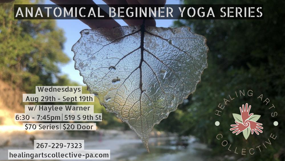 Anatomical Beginners Yoga Series.png