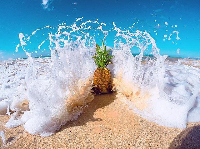 It's Good Friday 🍍💦😁🤙🏼 . . . #gopro #maui #pineapple #stokedhawaii #mauilife #hawaii #kihei #makena #bigbeach #aloha #nokaoi #shaka #hawaiianstyle #goprolife #gopro3plus #hero5 #goprophotography #goprouniverse #808allday #dakine #goprohawaiilife #paradise #alohafriday #camkixcontest