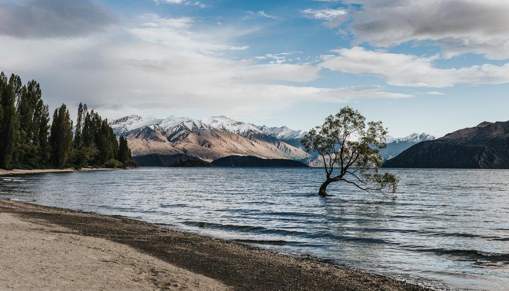 NZTrip2018_Ryan--6.jpg