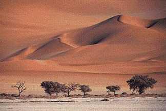 dry_desert.jpg