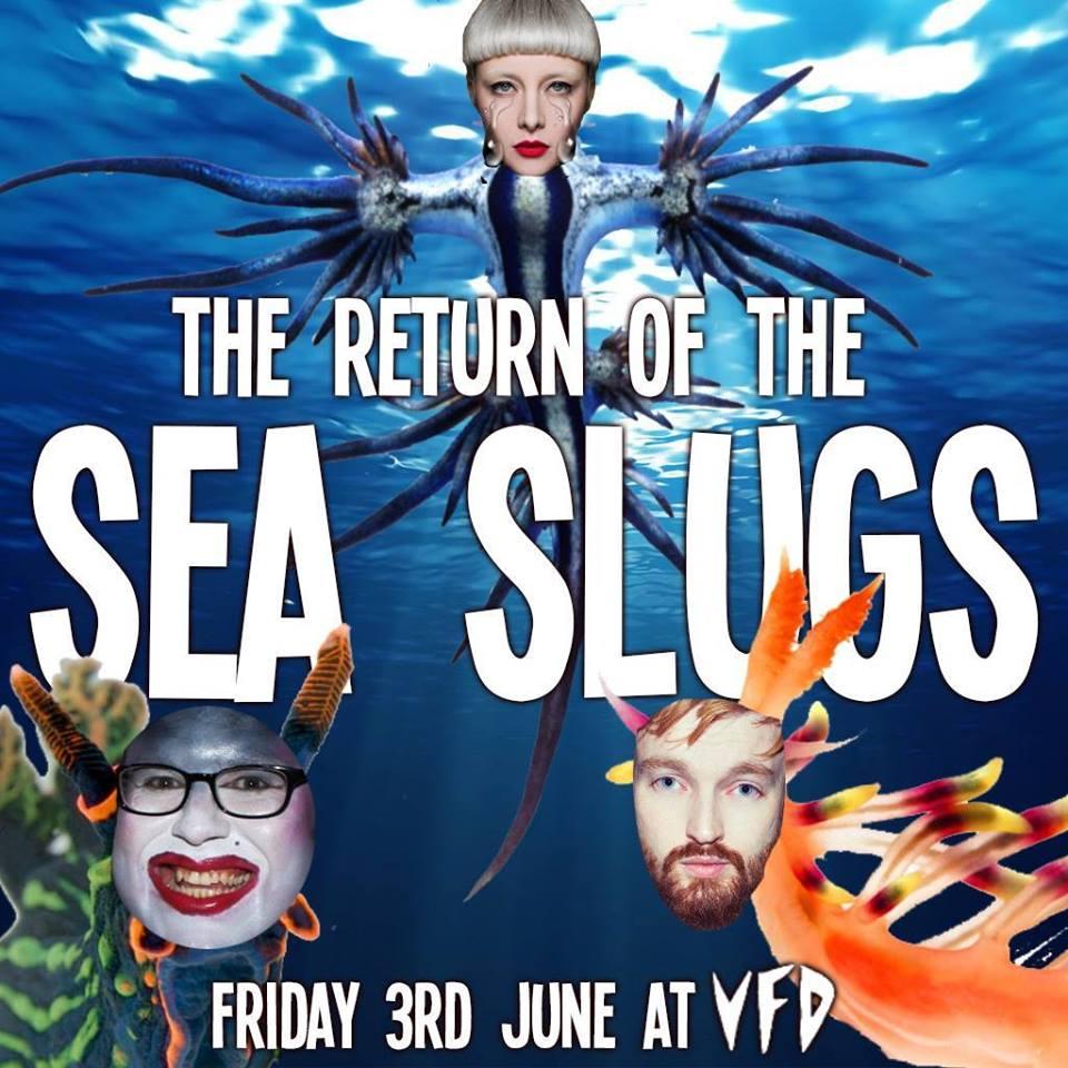 Sea-Slugs.jpg