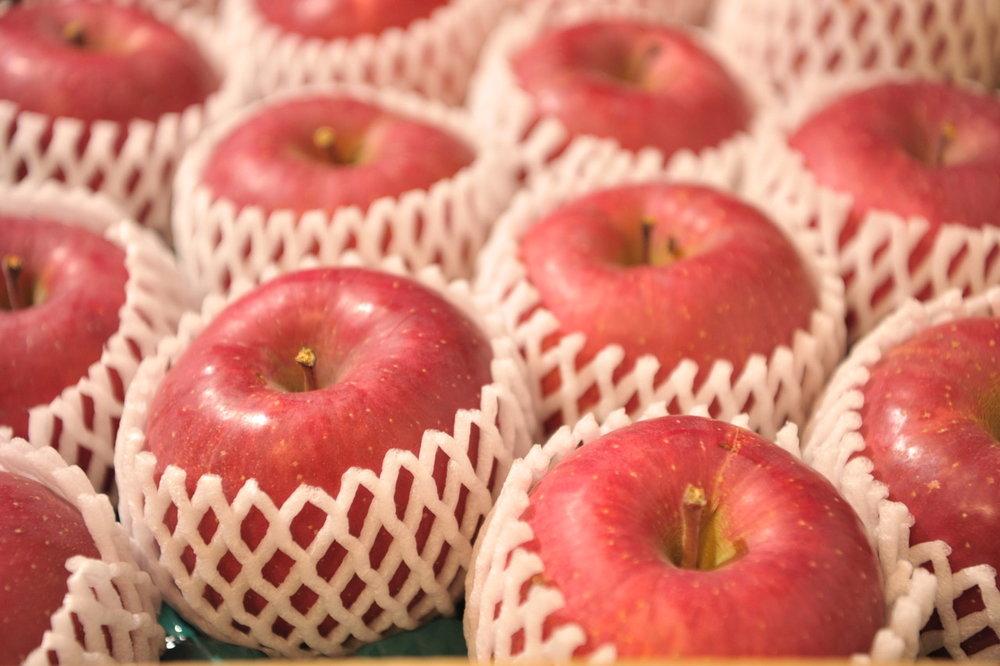 りんご2.jpegサイズ中.jpeg