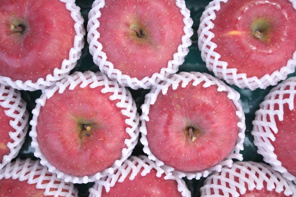りんご1.jpegサイズ中.jpeg