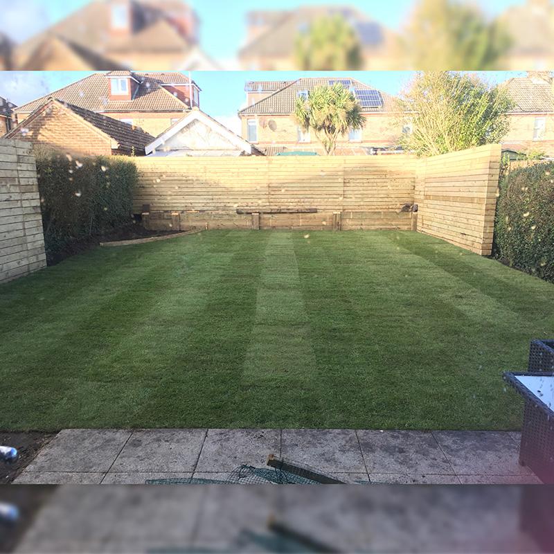 Poole Semi, Garden