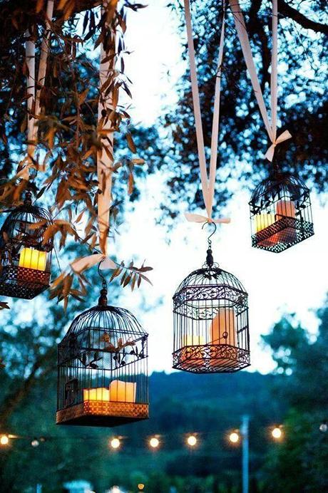 Birdcage Brightness