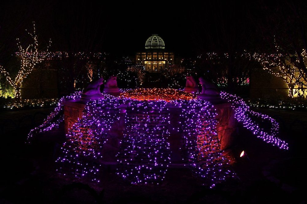 2013_Lewis_Ginter_Botanical_Garden_Dominion_Gardenfest_of_Lights_(11662420576).jpg
