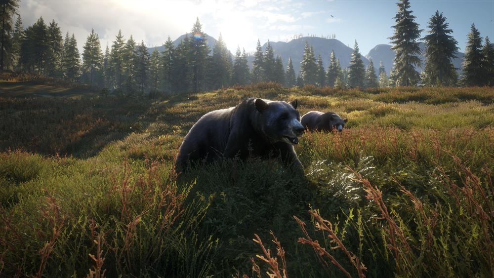I  theHunter vandrar man över vitt sträckande landskap i väntan på att skymta något, till exempel en björn. Frågan är om du lyckas komma så här nära?