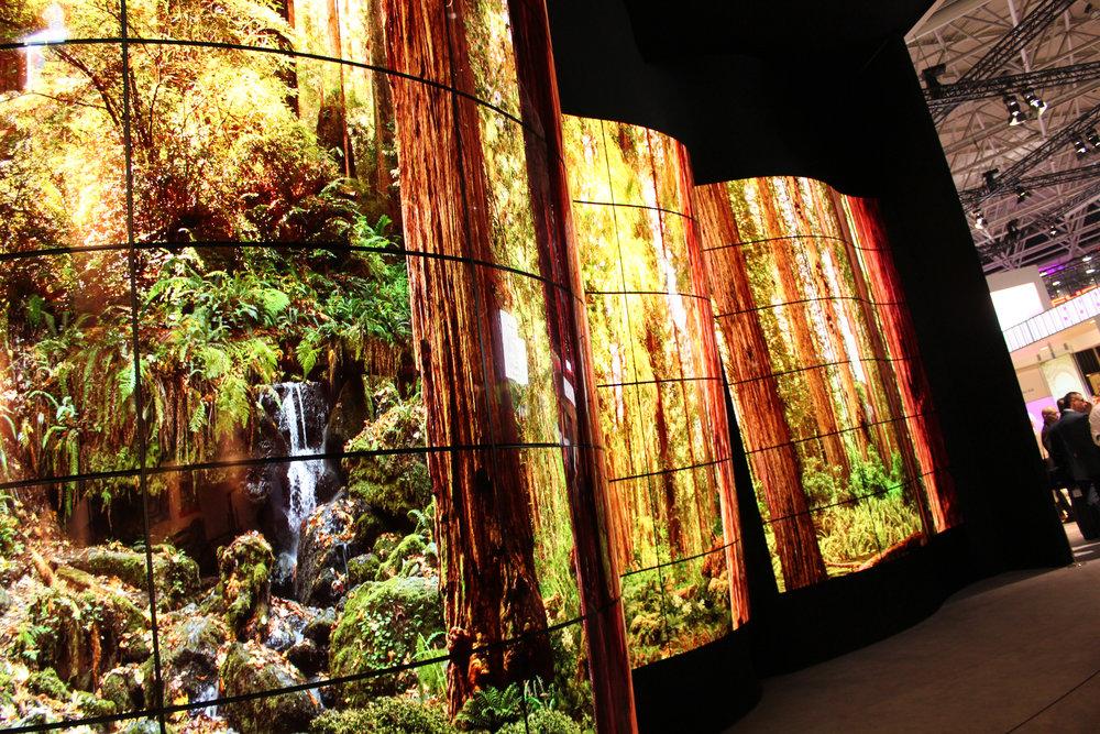 LG:s gigantiska installation OLED Canyon