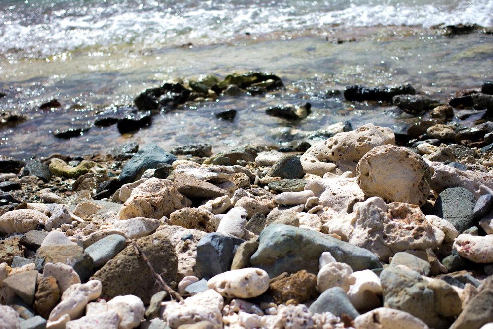 28 (0874.1) Moskito Island.jpg