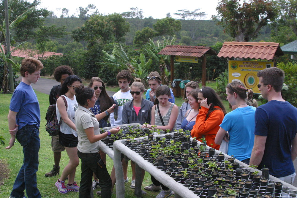 coffee tour_Costa Rica_IG Scholar.jpg