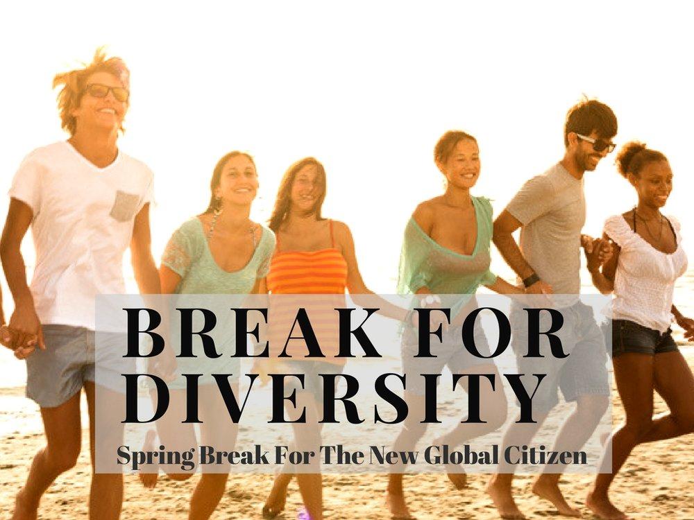Break for Diversity_Banner_2018.jpg