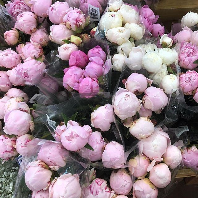 I love you Trader Joe's! You just made my day with your fragrant peonies and your asshole free experience. Peonies always remind me of your wedding @stefaniadecassania ❤️