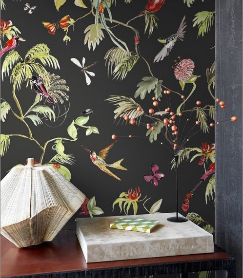 465b79a569aa2959a7fa4001dd47a74b---wallpaper-bird-wallpaper.jpg