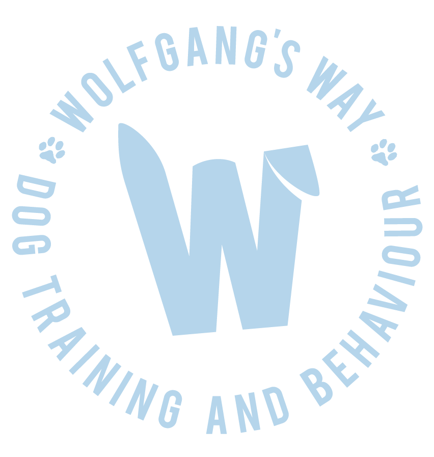 Wolfgang's Way Dog Training: bespoke puppy and dog training in North West London