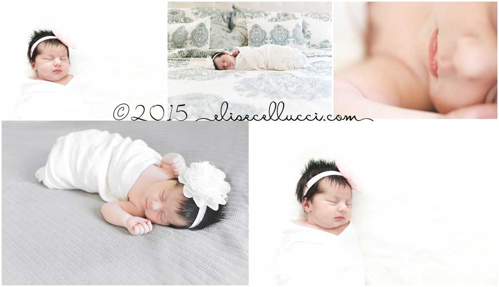 sweet baby girl bliss | blue bell pa newborn photography