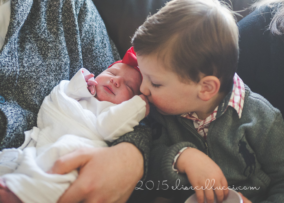 new addition } north wales pa newborn photographer