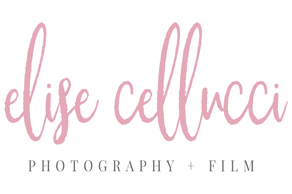 Montgomery County Newborn Family Real Estate Photographer/Videographer