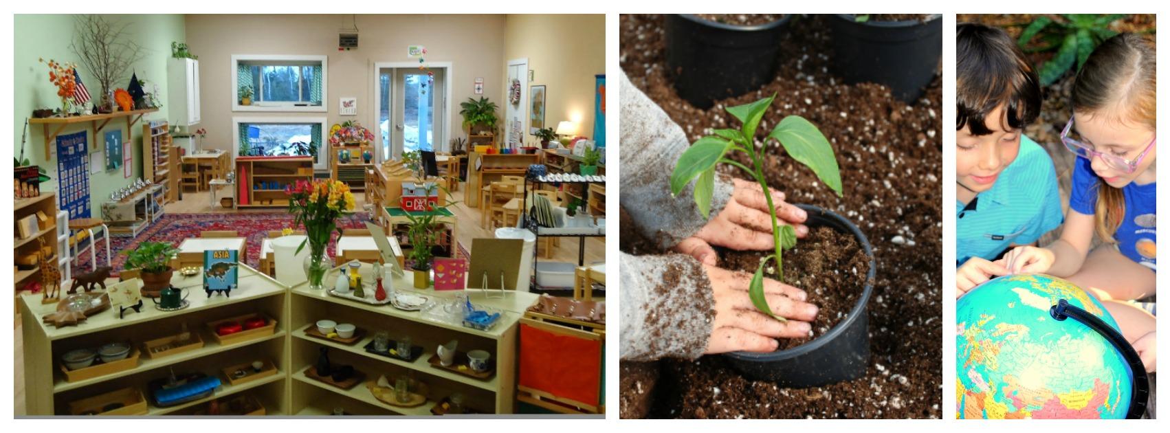 Laniakea | Montessori School in Gainesville Fl
