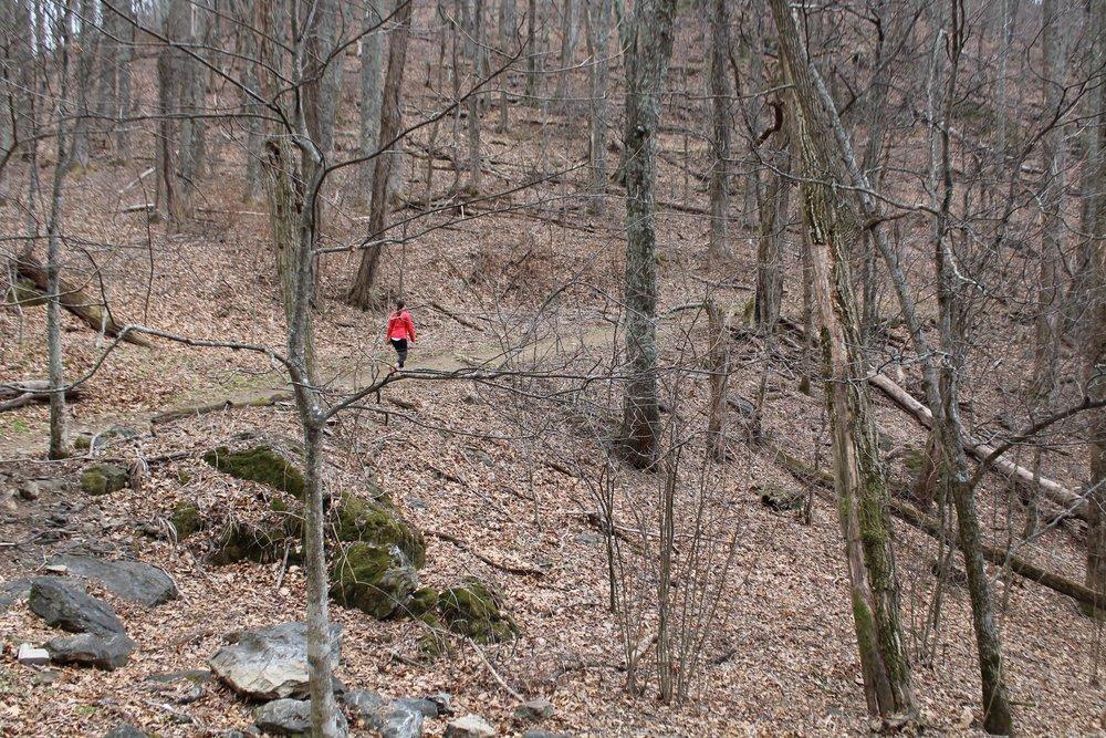 Blue Ridge Mountain Hike