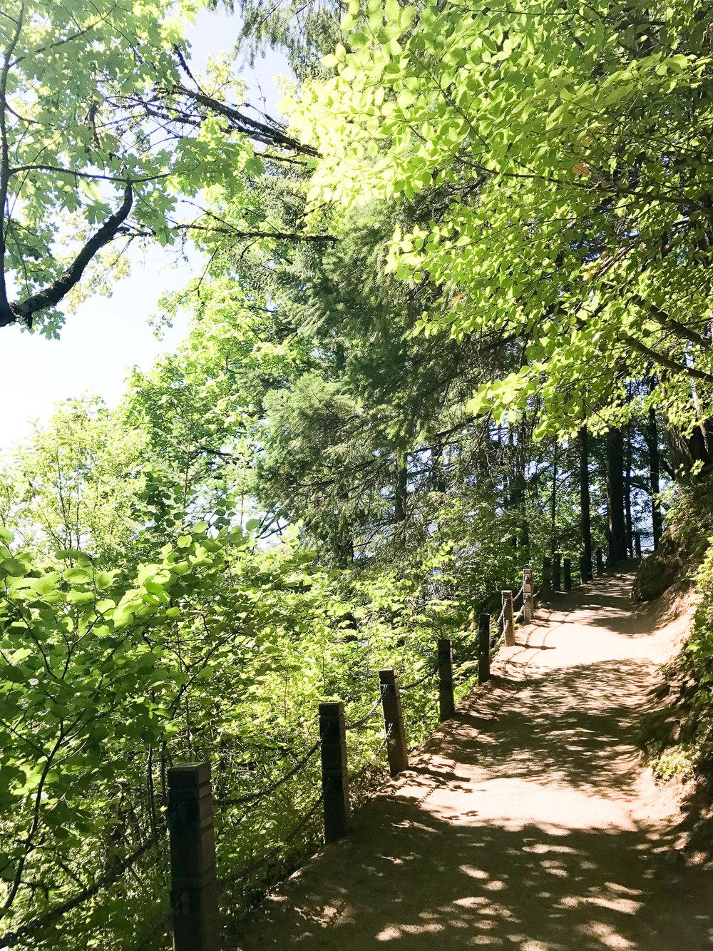 HikingPath.jpg