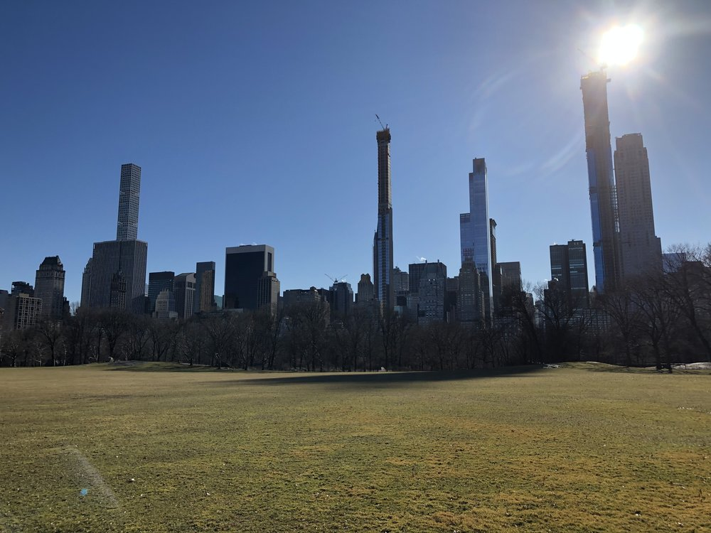 Strolling through Central Park