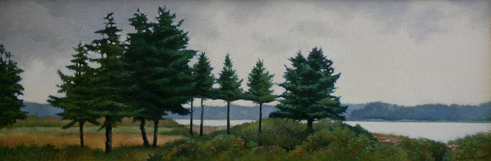 maine-pines.jpg