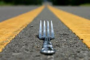 janis cohen fork in the road