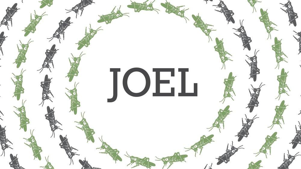 Joel - 4/8/18–6/618
