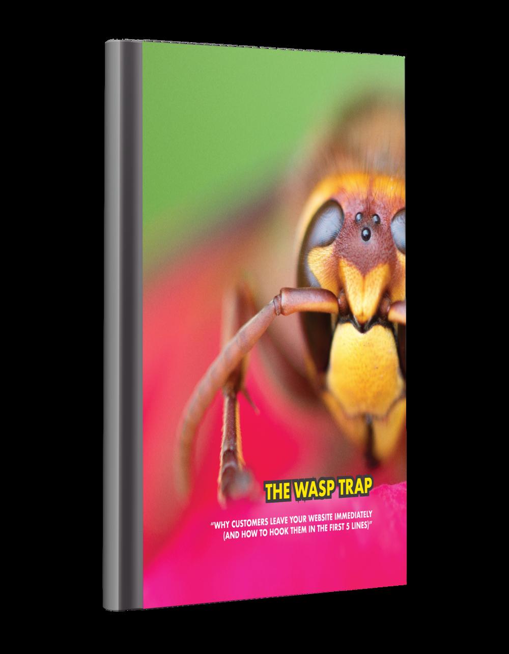Wasp Trap.png