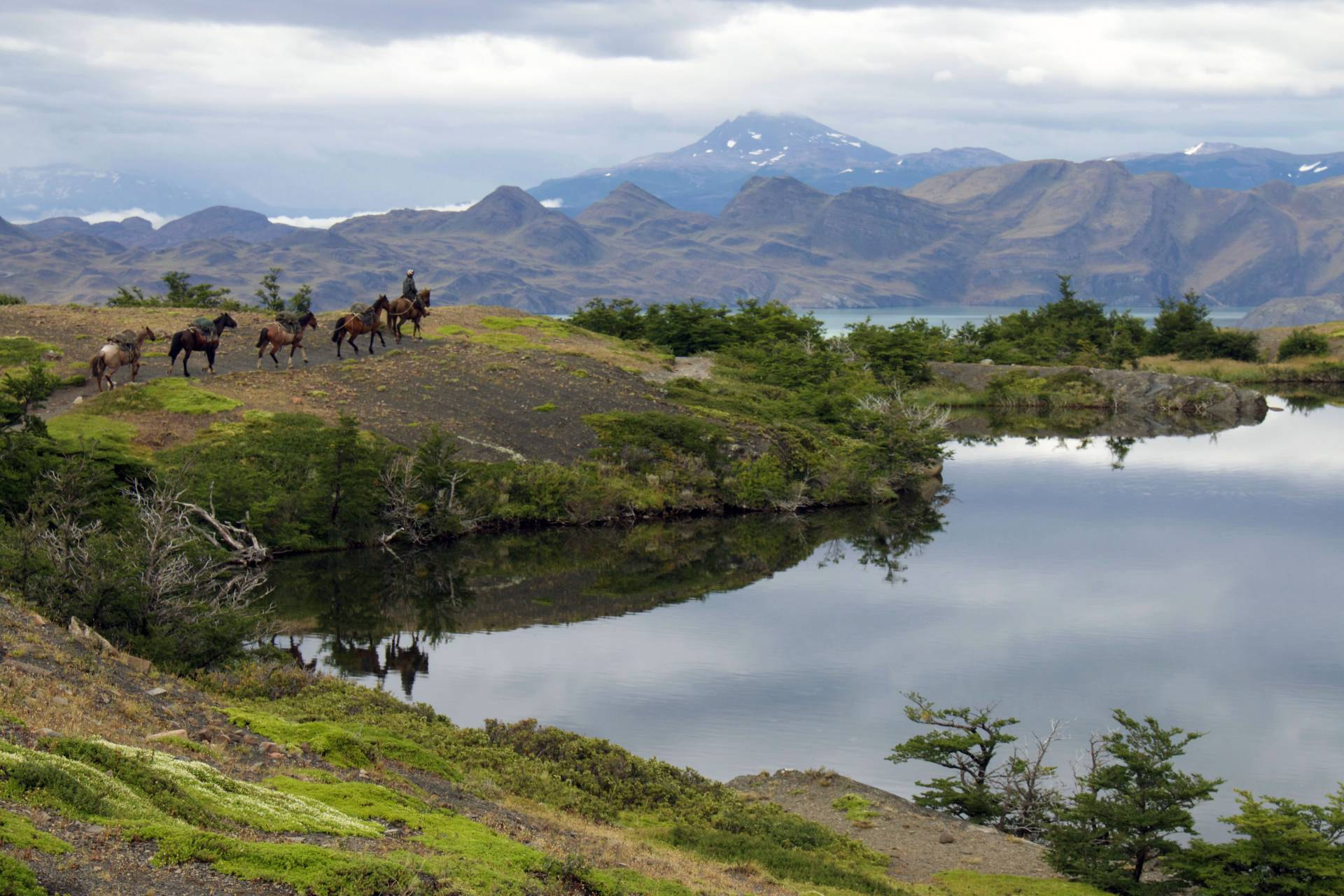 Gauchos on the trail in Torres Del Paine National Park