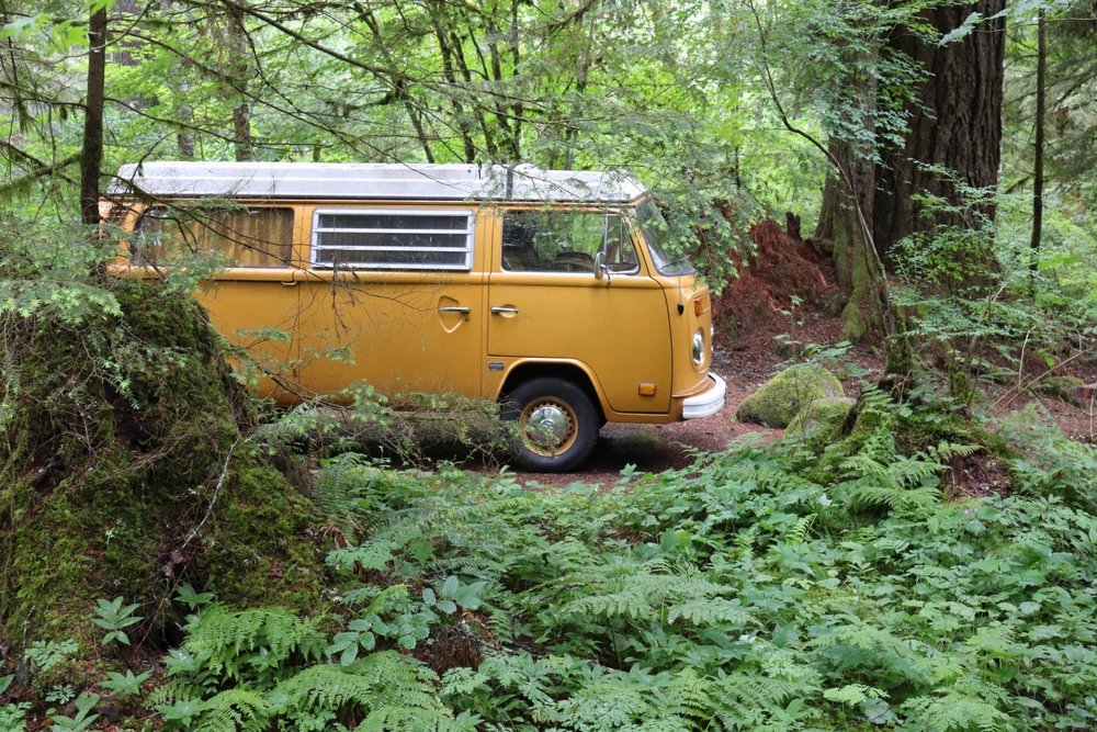 camping in our VW bus Buttercup