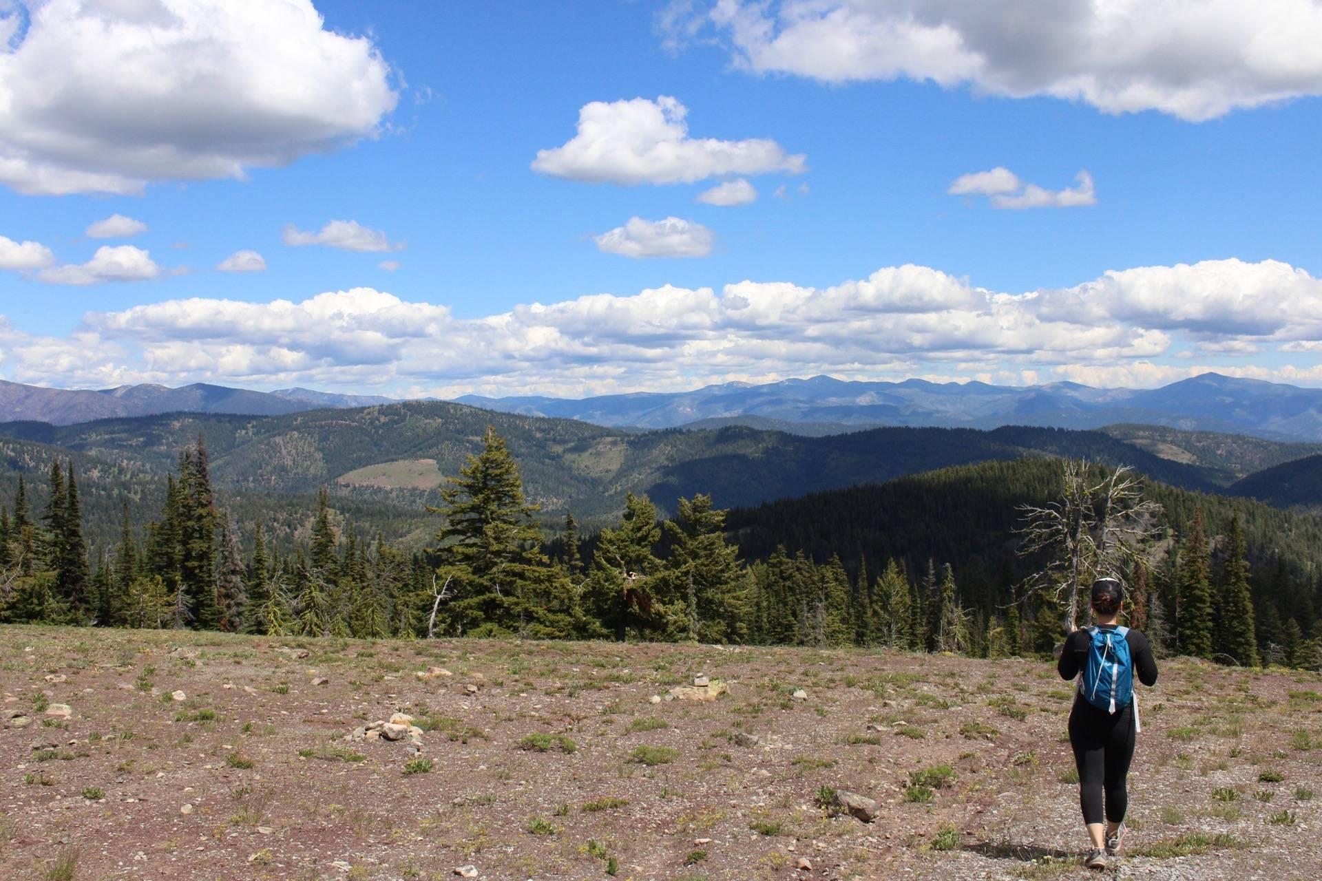 Goat Peak Lookout Hike, Mazama WA