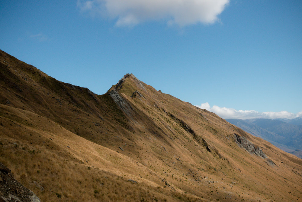 180202_new-zealand-road-trip-lcarvitto_27.jpg