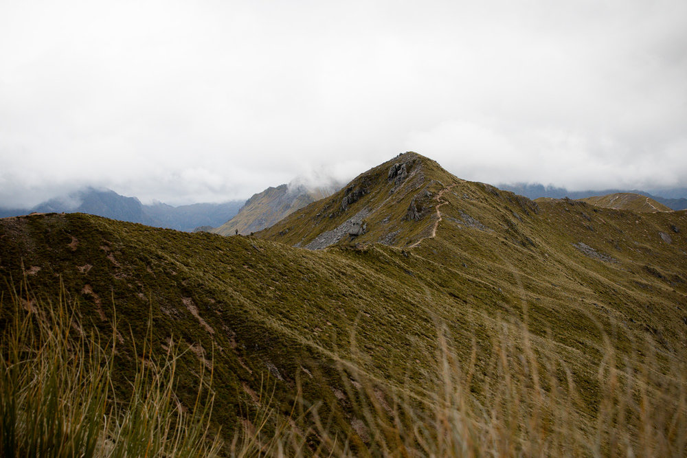 180208_new-zealand-road-trip-lcarvitto_59.jpg