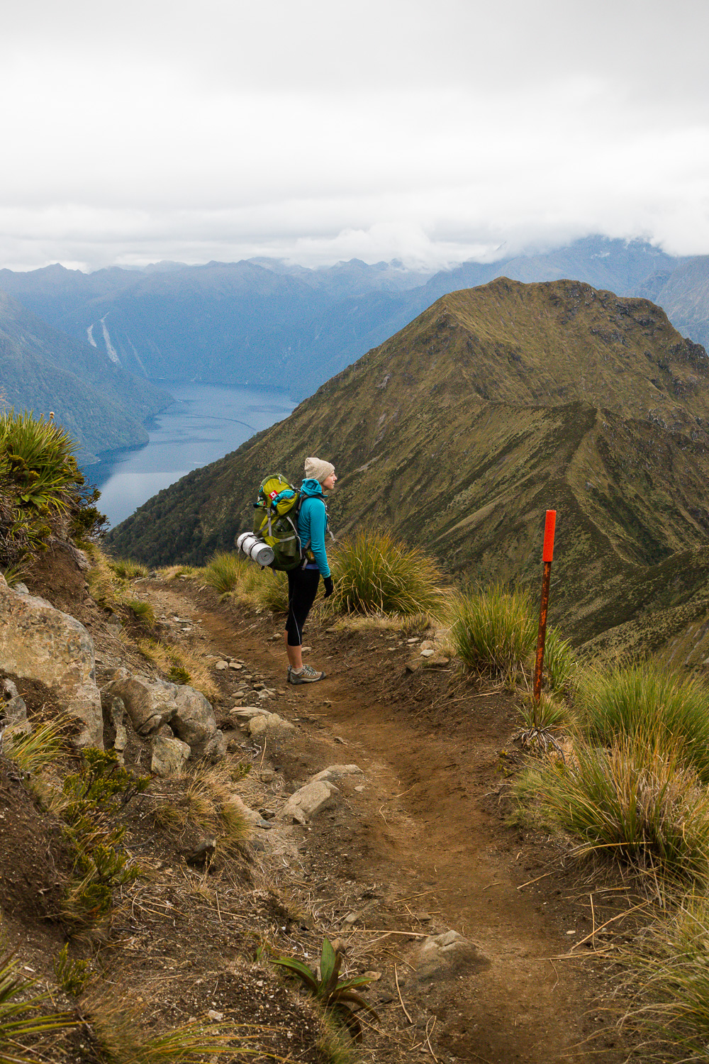 180208_new-zealand-road-trip-lcarvitto_58.jpg
