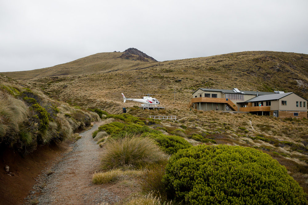 180208_new-zealand-road-trip-lcarvitto_55.jpg