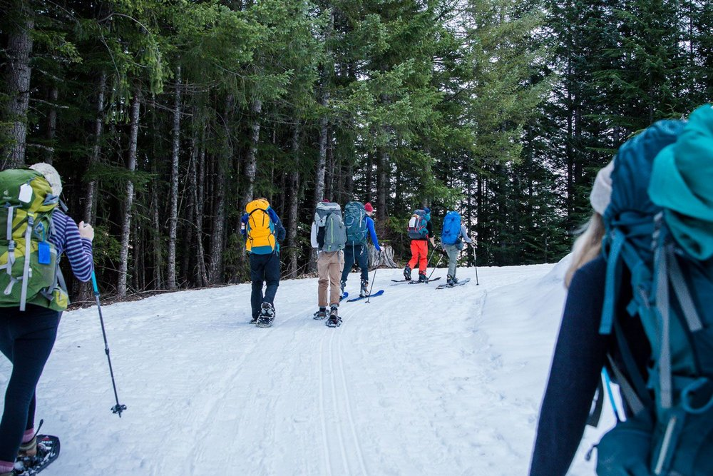 Snowshoeing up to Mt. Bruni | Mt Tahoma Trails Association