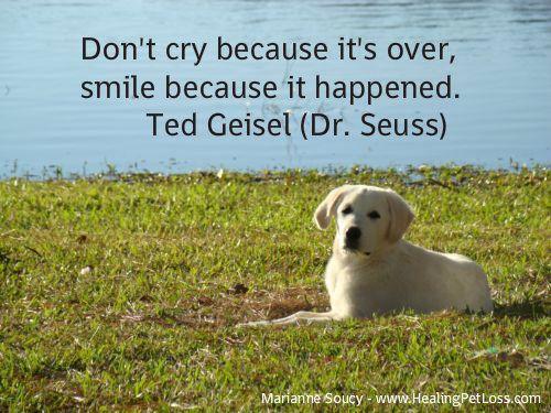 Inspirational Pet Loss Quotes Acp
