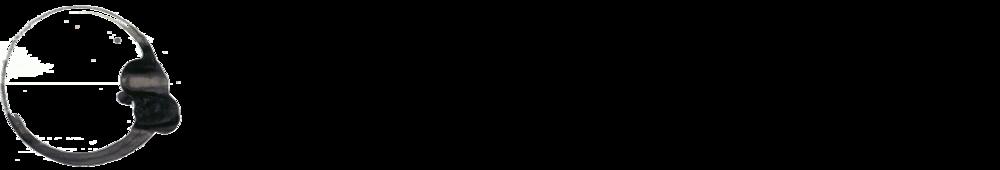 Takesada Matsutani | Artist Logo