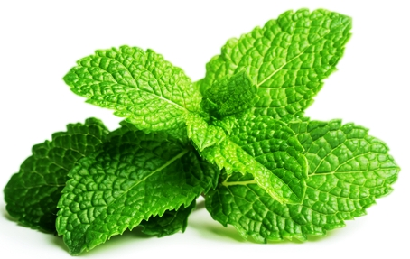 Peppermint Leaf:  Soothes digestive/gastric upsets and halitosis