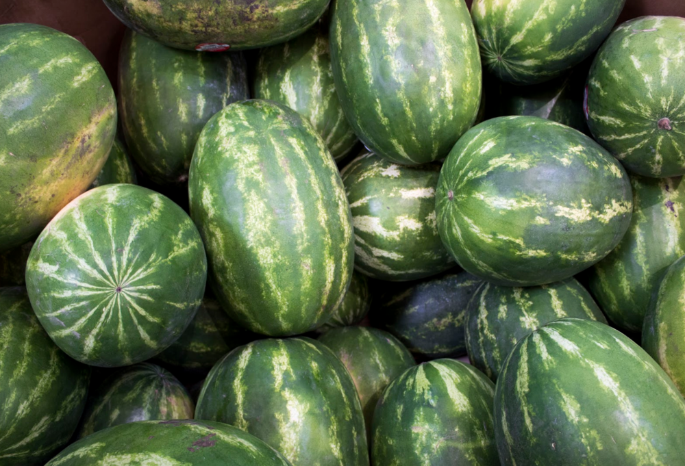 Watermelons 1.png