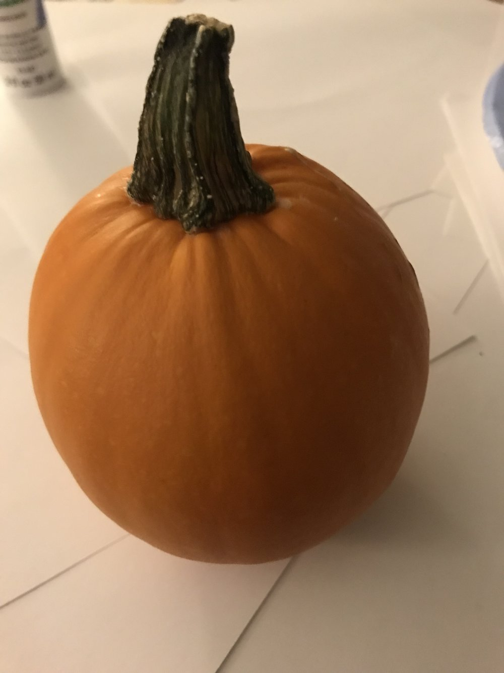 First: Pick your pumpkin - This little beauty is from Green Acres Farm in Milan, Tennessee. Everybody at Cypress Magazine was given a little pumpkin to decorate for their desk.