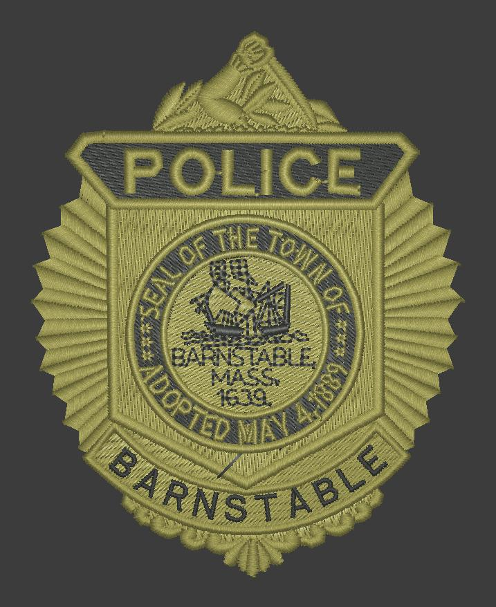 BPD SWAT Badge.jpg
