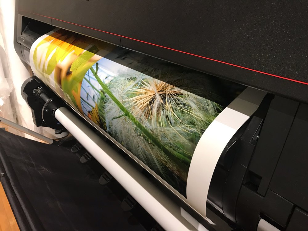 Blind Spot Creatives - Picture Printing