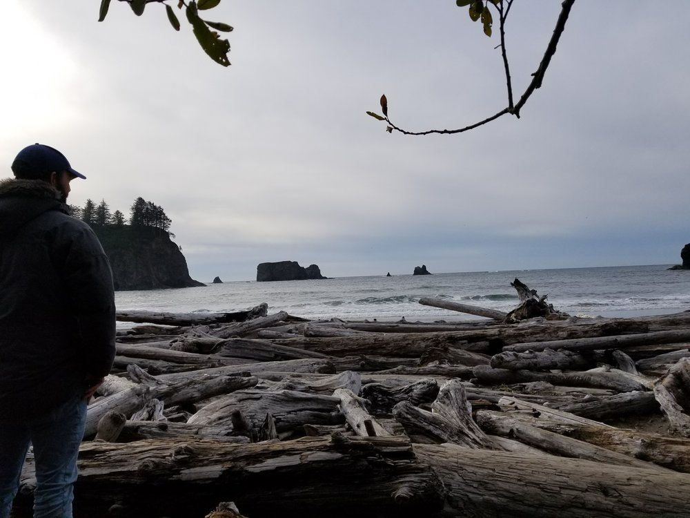 Beaches at Olympic NP