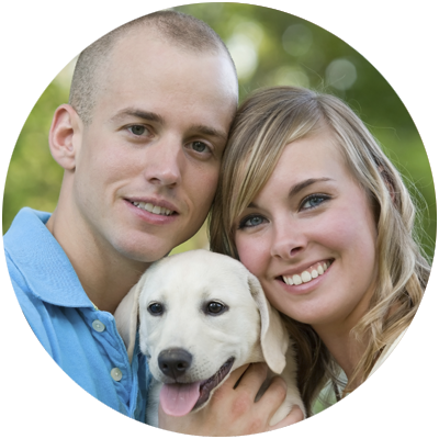 pet dental care junction city kansas