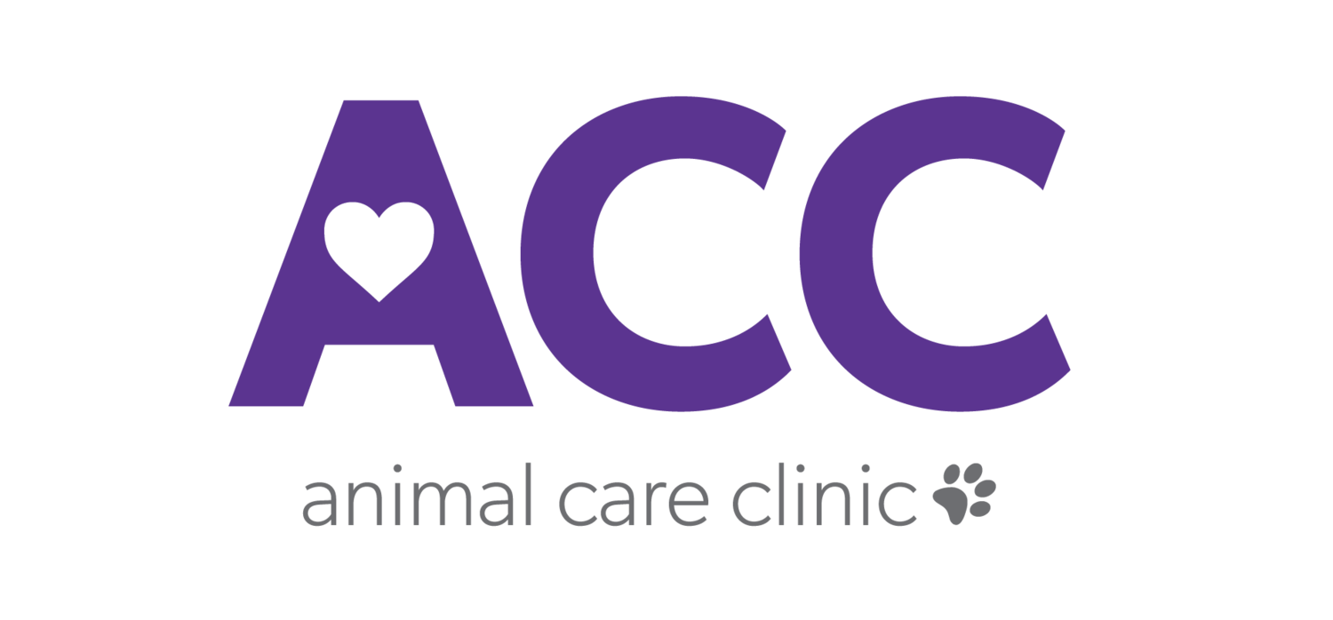Veterinarian in Junction City | Animal Care Clinic