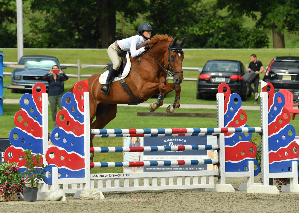 "McCool is a recently imported Irish Sport horse from Ireland. He is a 14 year old 17.3 hand warmblood that has a ""in your pocket"" personality. He as successfully competed the 1.30m jumpers with many wins in 2017 in Ireland and is a solid junior/amateur jumper mount. He can be seen at Vermont Summer Festival."