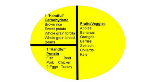 Nutrition - Ideal Meal Graphic.png