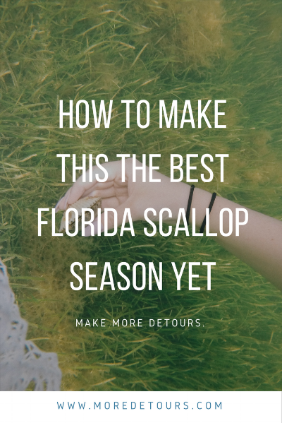 Florida Scallop Season can be a success by following these tips at www.moredetours.com.